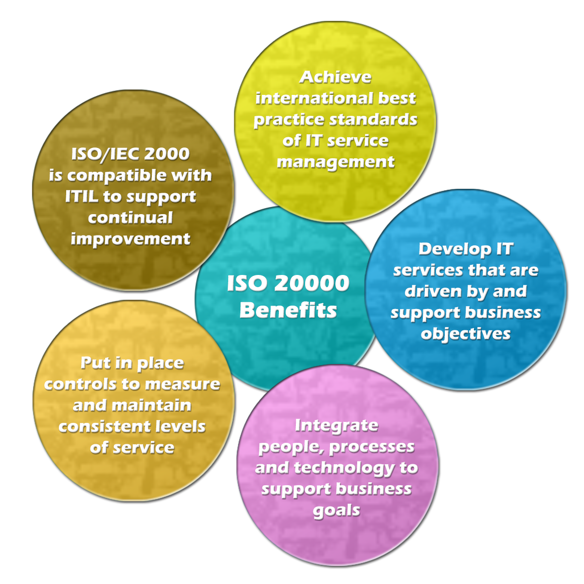 iso/iec 20000-1 it service management standard